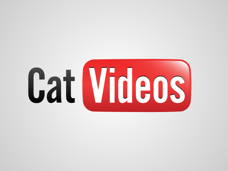 'Vídeos de gatos'