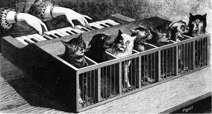 El 'katzenklavier' en una ilustración de 1883