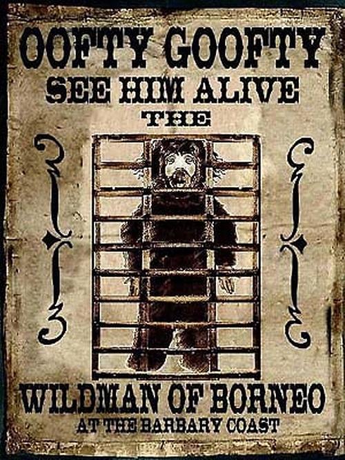 'Oofty Goofty', 'El hombre salvaje de Borneo'