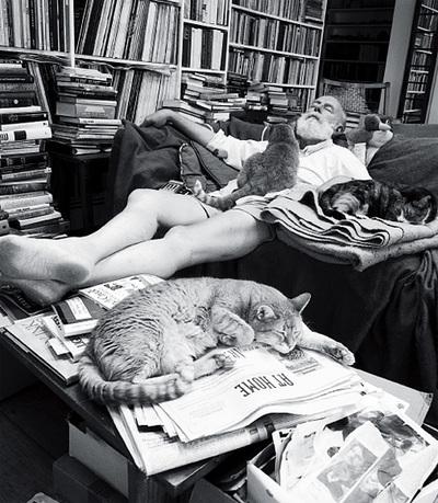 En su casa llena de libros y con sus inseparables gatos