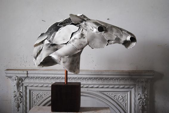 'Horse XV'