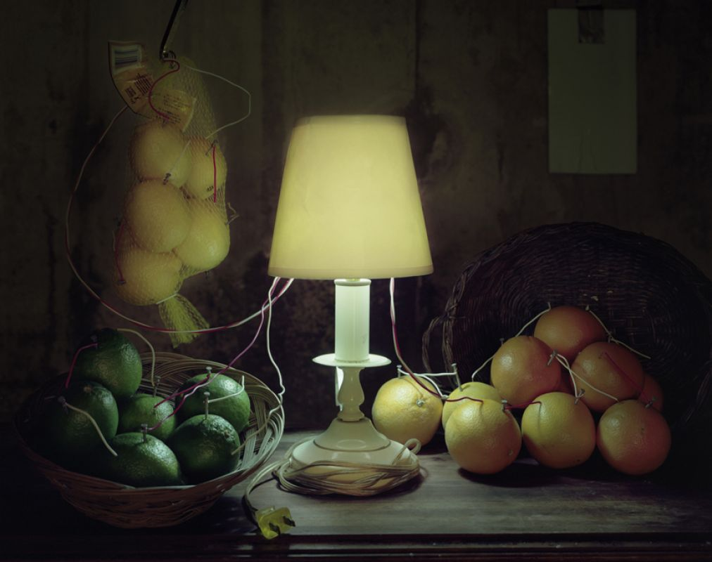 'Fruit Battery Still Life (Citrus)'