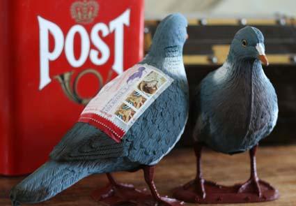 'Pigeon Post'