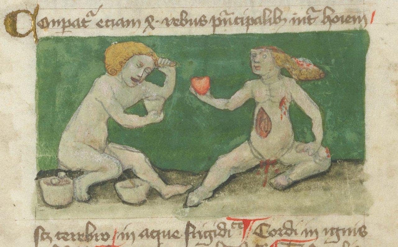 Ilustración del manuscrito suizo 'De interioribus hominis Aurora consurgens', St. Gallen. Siglo XV.