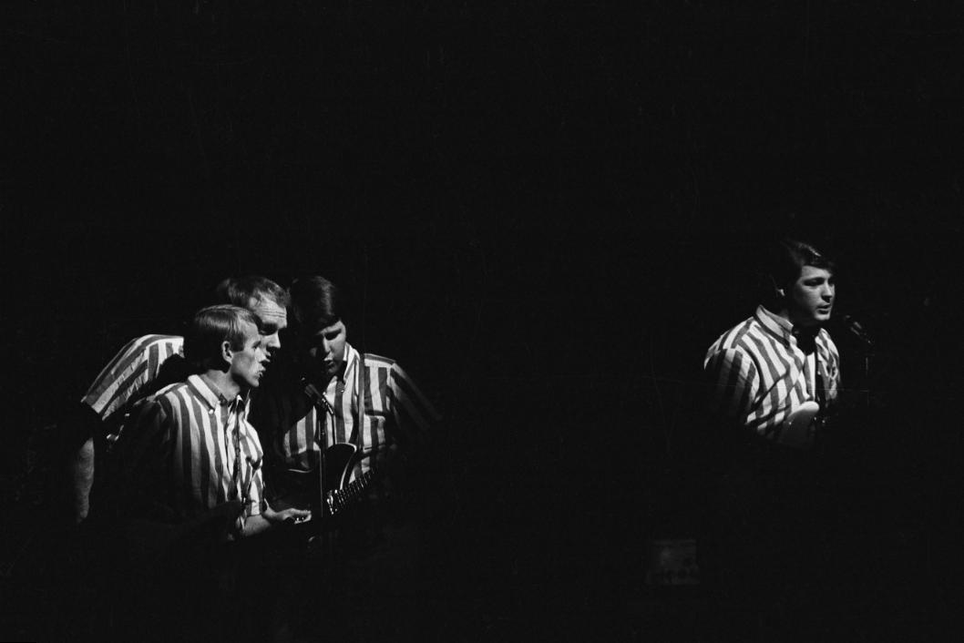 The Beach Boys © Roger Kasparian