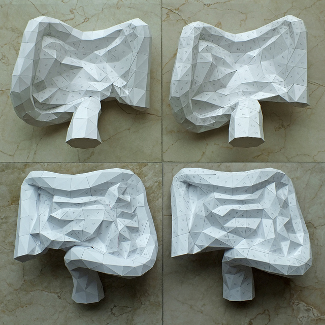 Paper Intestines