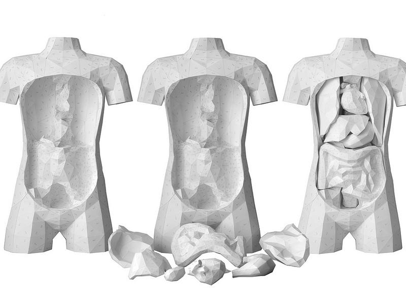 El set de anatomía que puedes descargar de Internet | Trasdós