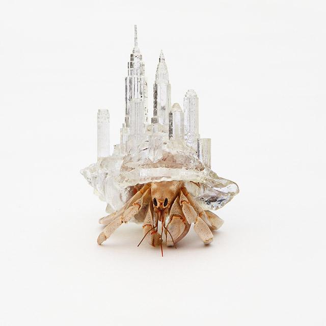 Una de las conchas para cangrejos ermitaños diseñadas por Aki Inomata