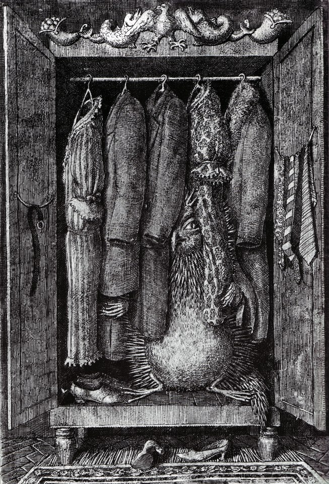 Domenico Gnoli - closet
