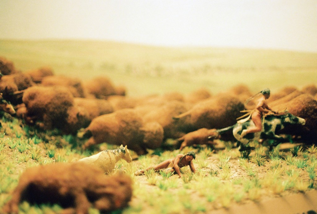 buffalo hunting - field museum