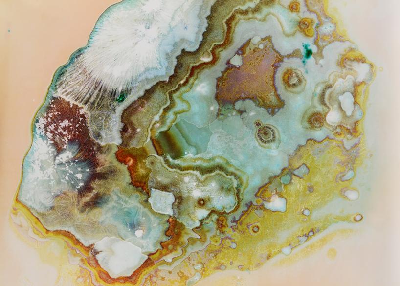 'MDMA' - Sarah Schoenfeld