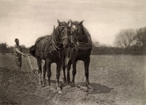 """Peter Henry Emerson - """"At Plough, The End of the Furrow"""", 1887"""