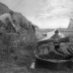 """Peter Henry Emerson - """"Ricking the reed"""", 1886"""