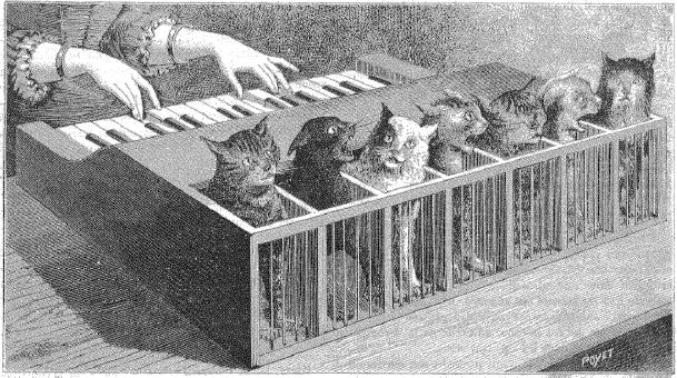 El 'piano de gatos' en una ilustración de 1883