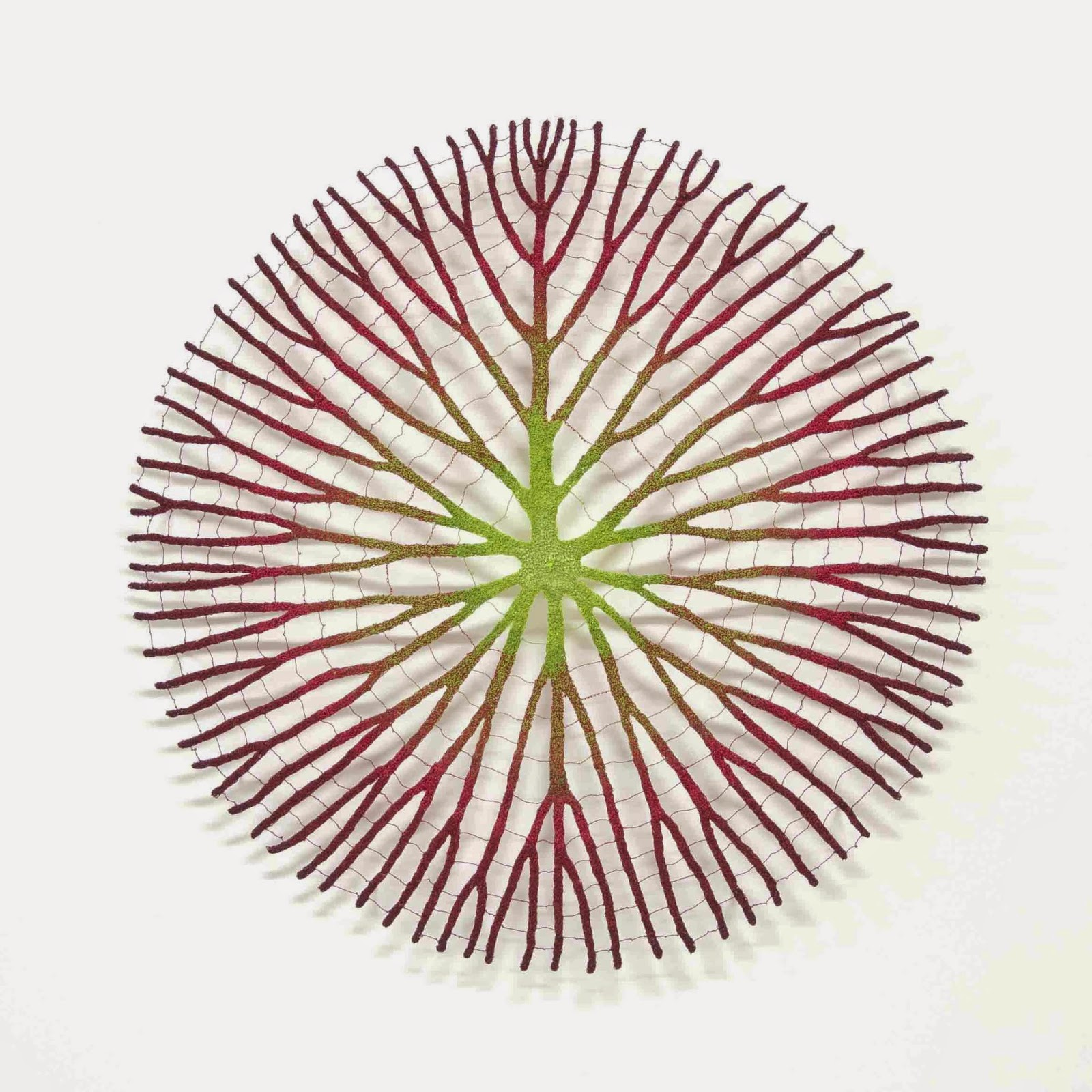 'Amazonian water lily' - Meredith Woolnough
