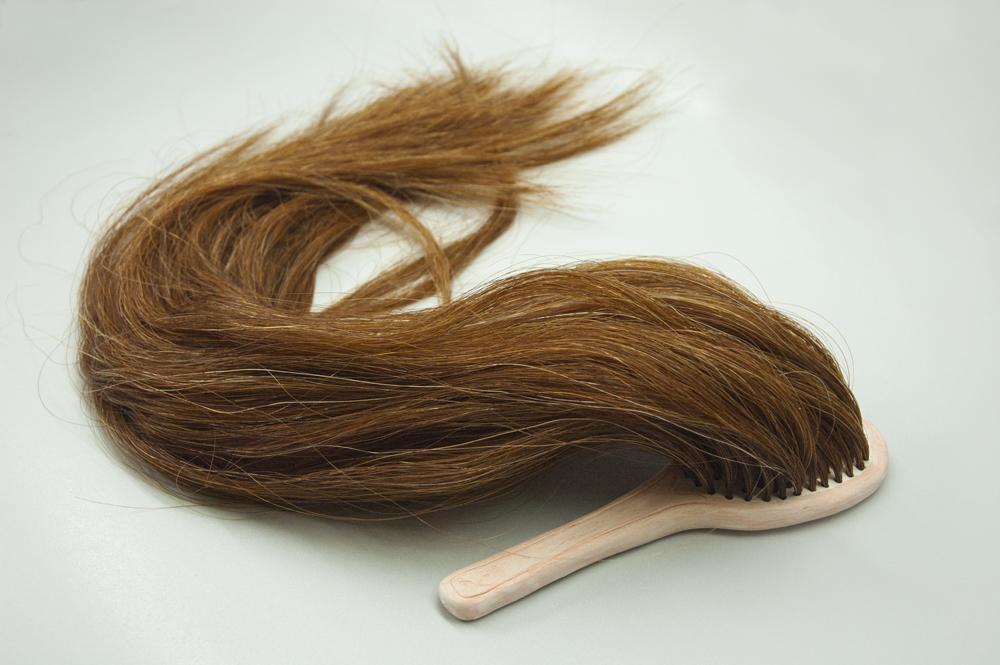 'Hairbrush' - Fiona Roberts