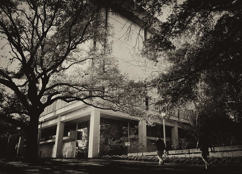 Sede del Harry Ransom Center - Foto: Harry Ransom Center