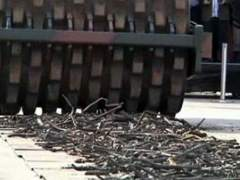 Destrucción de armas en Brasil. (ATLAS)
