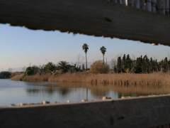 Imagen del río Llobregat, Barcelona. (ARCHIVO)