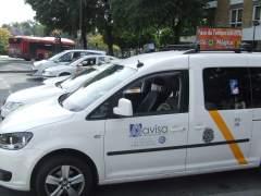 Taxis en una parada de Sevilla. (ARCHIVO)