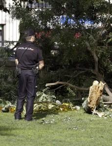 Lugar del parque del Retiro en el que cayó una rama que causó la muerte a un hombre de 38 años de edad. EFE