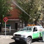 Aplicación de tratamientos fitosanitarios contra la galeruca del olmo en la Calle Corregidor Juan Francisco de Luján, en Moratalaz. (JMD Moratalaz)