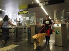 Imagen de archivo de un perro en el metro