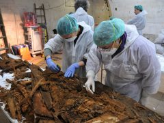 Arqueólogos y antropólogos analizan los restos hallados en la cripta de la iglesia de San Ildefonso, en el convento de las Trinitarias, en busca de Cervantes. (GTRES)