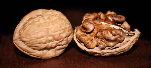 Las nueces tienen una fantástica proporción entre los ácidos grasos omega-6 (38.092 mg/100g) y omega-3 (9.079 mg/100g), grasas esenciales que favorecen la reducción de los niveles de colesterol LDL (el malo). También nos aportan ácido alfa-linoleico y polifenoles que actúan como antioxidantes, cuidando especialmente nuestras neuronas del envejecimiento.