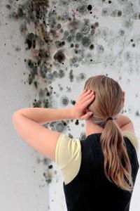 La humedad no es cosa de broma: aprende a prevenirla y ...