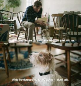 La anécdota del perrito saltarín