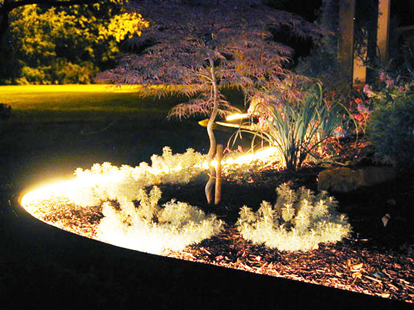 Las 4 claves para iluminar tu patio o jard n en las noches for Iluminacion para palmeras