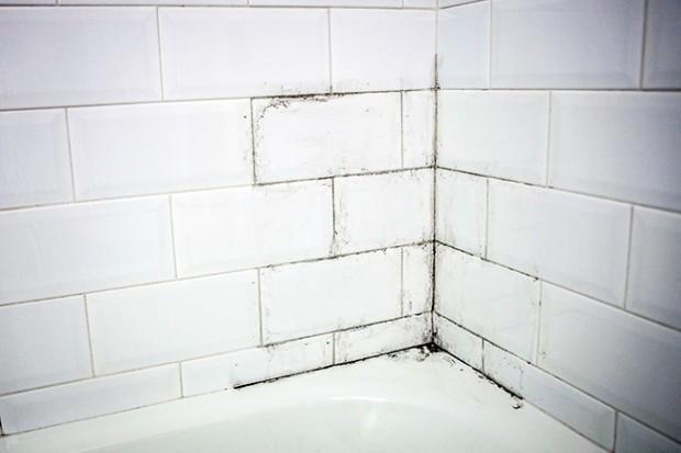 6 consejos para evitar el moho en tu ba o y cuidar la - Como evitar humedades en las paredes ...