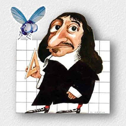 La anécdota de Descartes, la mosca y las Coordenadas Cartesianas
