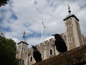 ¿Por qué en la Torre de Londres siempre hay cuervos?