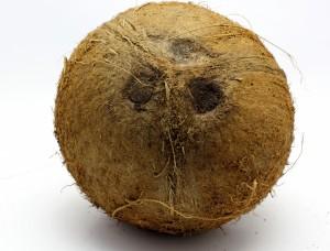 ¿Tiene algo que ver el personaje de 'el Coco' con el fruto de la palmera?