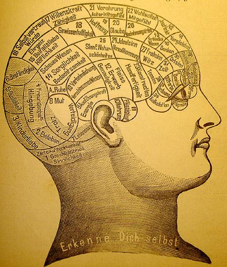El encéfalo y la personalidad según Franz Joseph Gall [Anécdota]