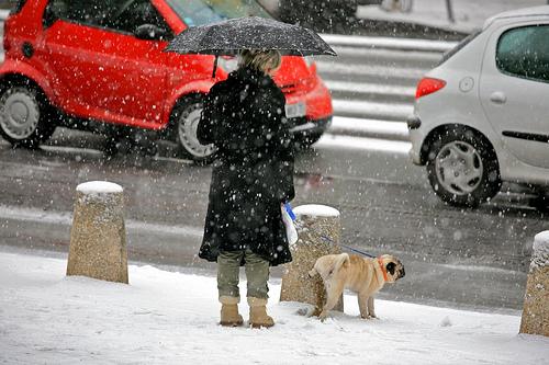 ¿Por qué cuando hace frío tenemos más ganas de orinar?