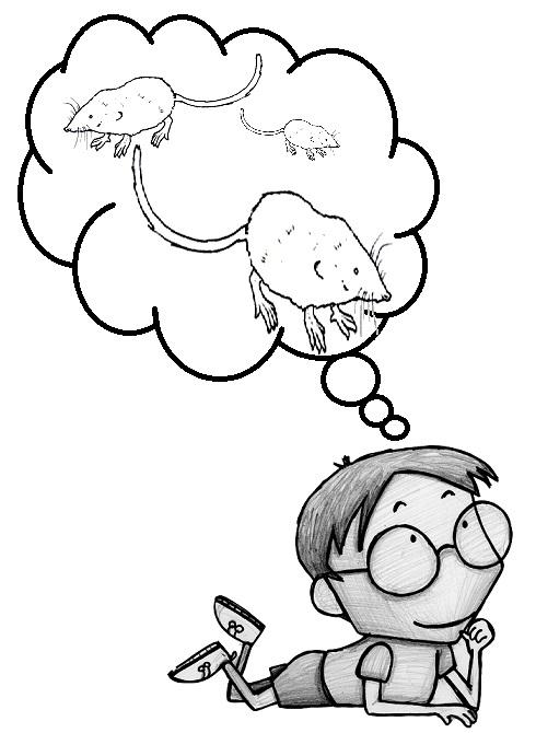 ¿De dónde surge la expresión 'estar pensando en las musarañas'?