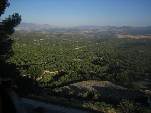 ¿Cuál es el origen de la expresión 'Irse por los cerros de Úbeda'?