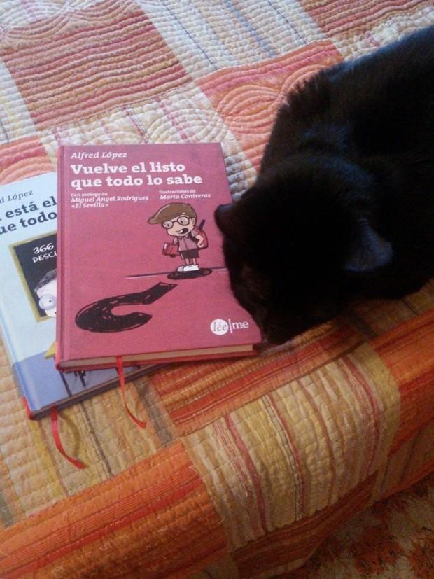 Un gato que no sabe cuál de los dos libros escoger (Foto gentileza de Nandy Recio)