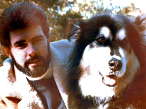 El perro que inspiró el apodo de 'Indiana Jones'